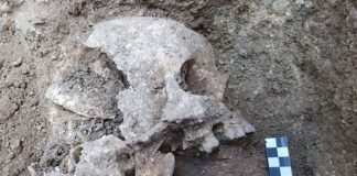 Eerie Child 'Vampire Burial' Discovered in Italy (Watch)