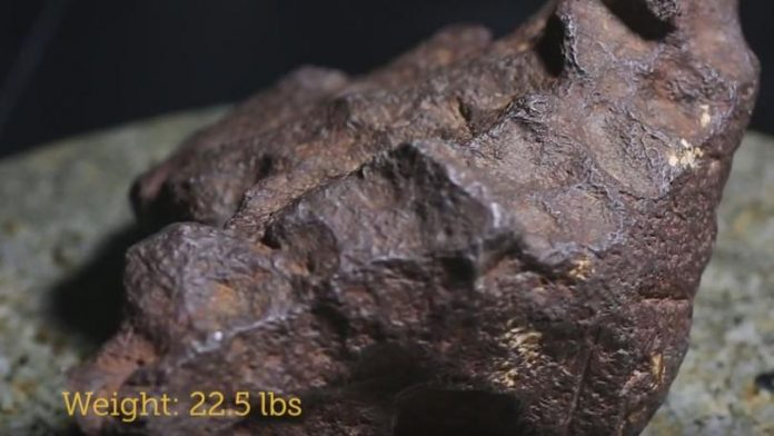Meteorite worth $100K was used as doorstop for years