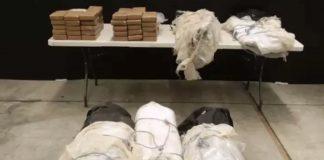 Cocaine Bust Made in a Banana Shipment (Photo)
