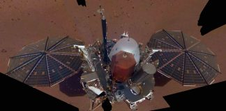 InSight Takes Its First Mars Selfie (Picture)