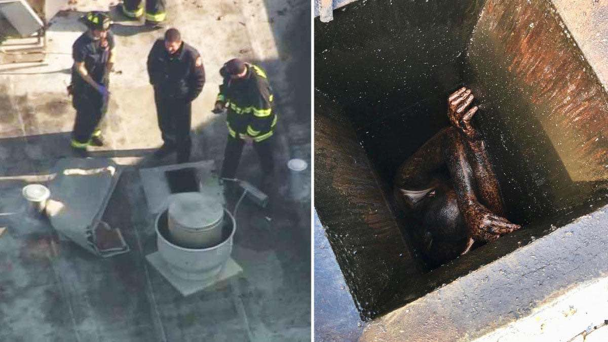 Man Rescued From Grease Vent Of Vacant Bay Area Restaurant Report Star Mag