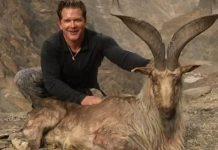Bryan Harlan, trophy hunter pays $110K to kill rare mountain goat