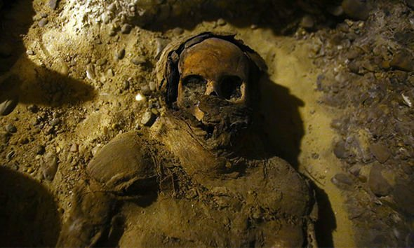 Pharaonic tomb with 50 mummies discovered near Cairo