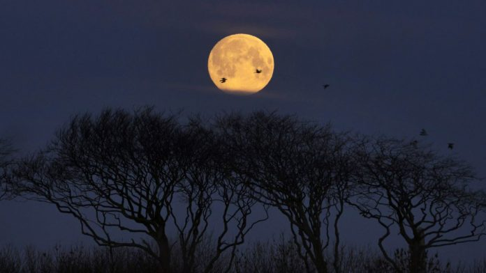 Final supermoon 2019: occurs as an asteroid zips close by