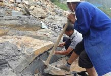 Fossil Treasure Trove of Ancient Animals found in China