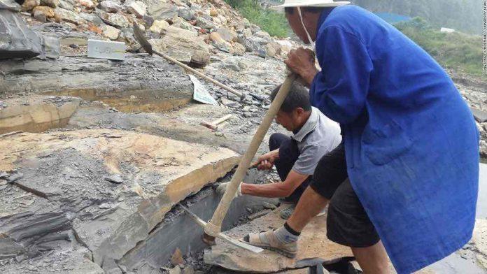 Fossil Treasure Trove of Ancient Animals found in China