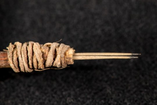Oldest tattoo tool in western North America (Study)