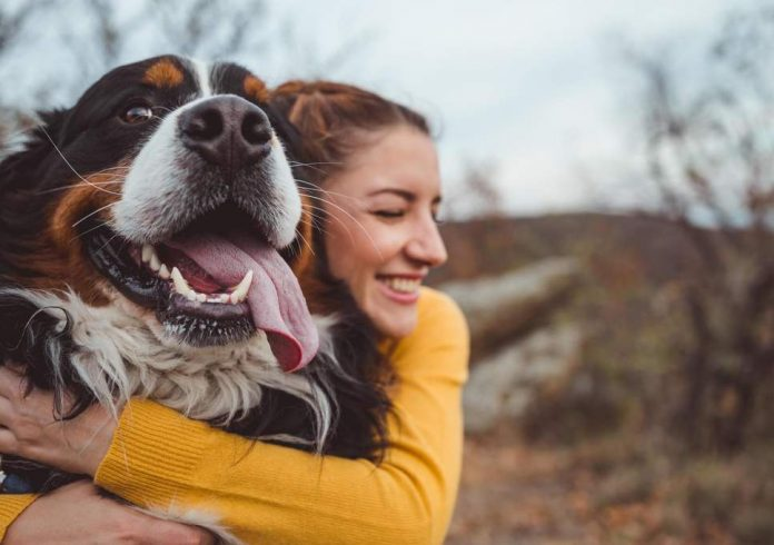 Dog owners are happier than cat owners, new study