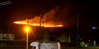 Mourne Mountains: Fire crews battling large forest fire in Co Down