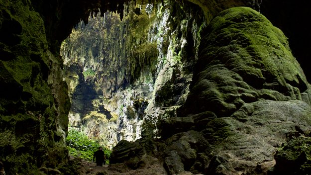 New Human Species Is Discovered in a Philippine Cave