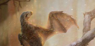 Bat-winged dinosaur found; failed experiment in flight