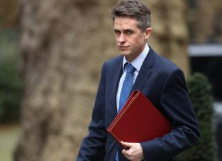 Gavin Williamson: wrong person in her Huawei investigation