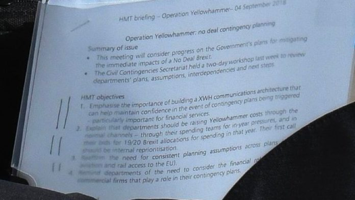 Yellowhammer leak: document sets out potential damage of no-deal Brexit