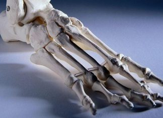 Humans have ability to regrow cartilage (Study)