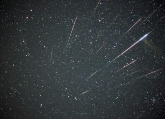 Leonids meteor shower is at its peak tonight, Report