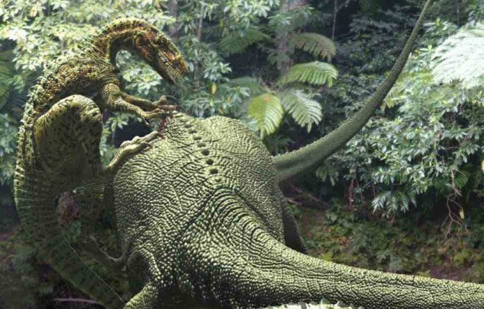 Australia: Bones from the largest theropod dinosaur ever discovered
