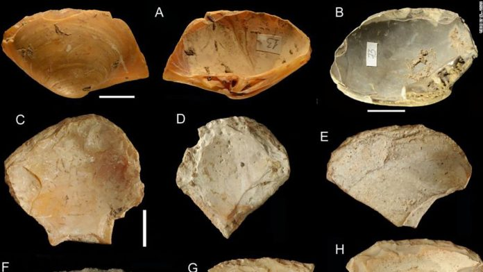 Neanderthals dived for shells to make tools, Says New Study