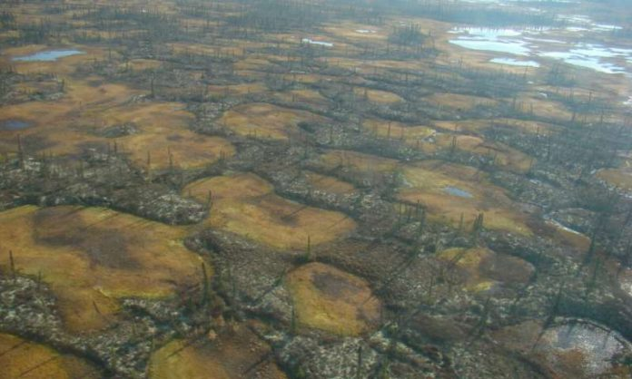 The Role of Arctic Permafrost Thaw in Climate Change, Report