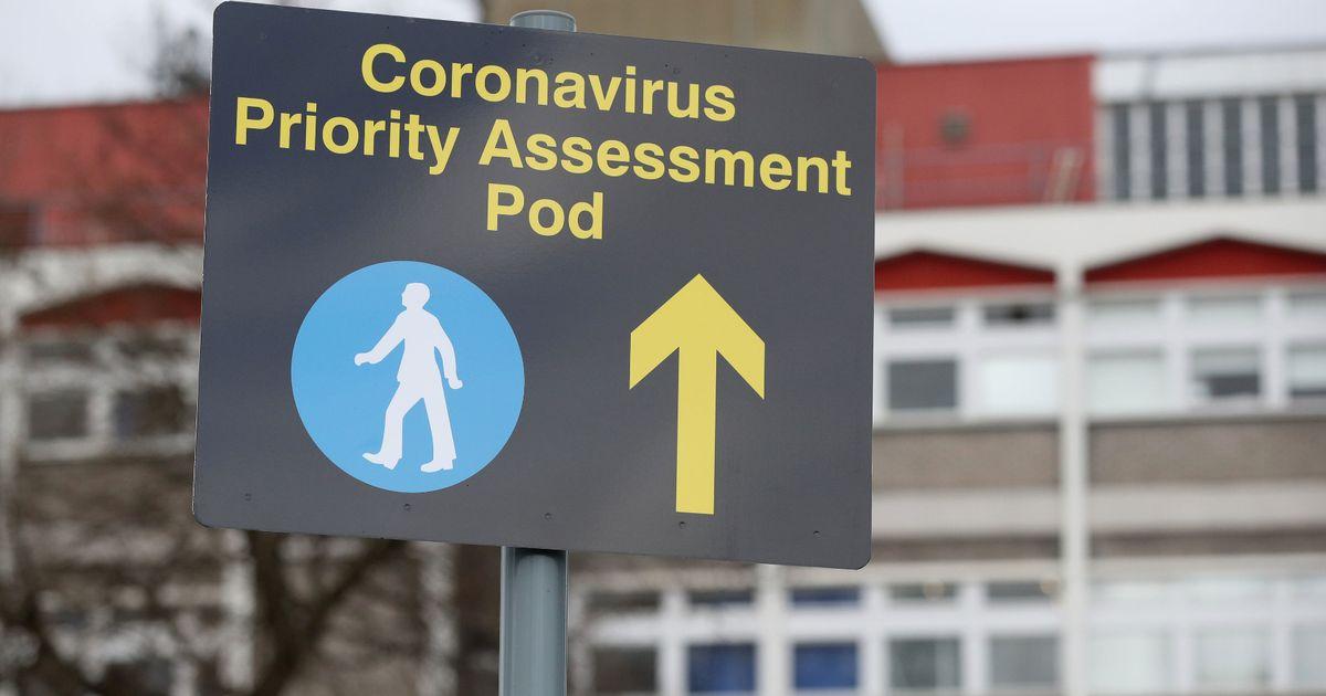 coronavirus update - photo #25