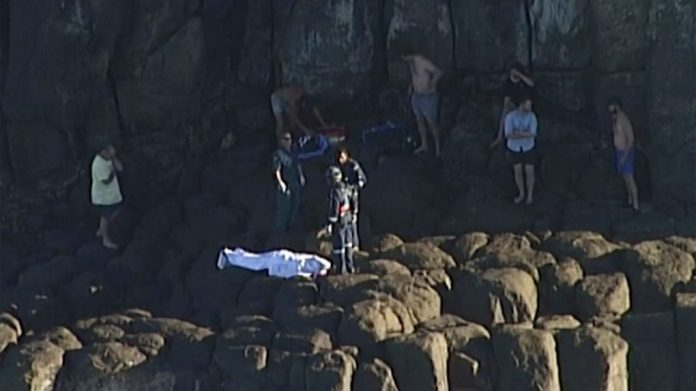 Australia shark attack: Diver killed spearfishing near Fraser Island