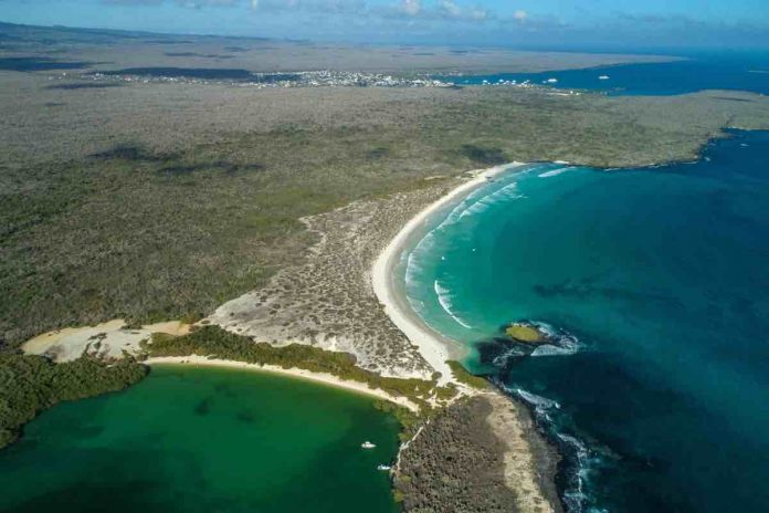 China bans fleet fishing in Galapagos reserve, Report