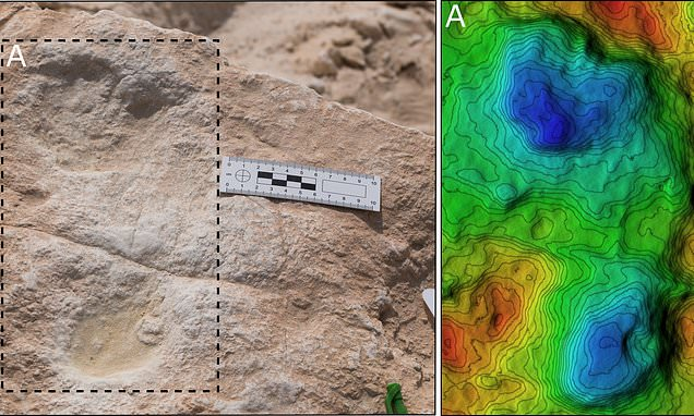 120,000-year-old Footprints Of Humans And Animals Found In Saudi Arabia (Study)