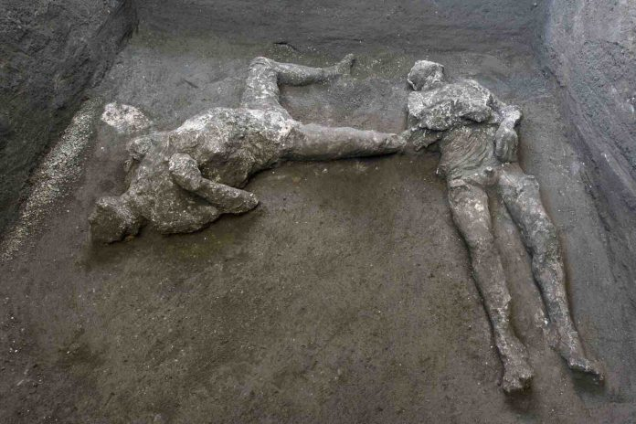 Long-buried remains found at Pompeii ruins (Picture)