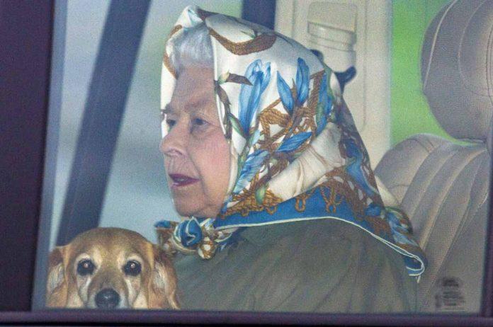 Queen Elizabeth's dog Vulcan dies, Report