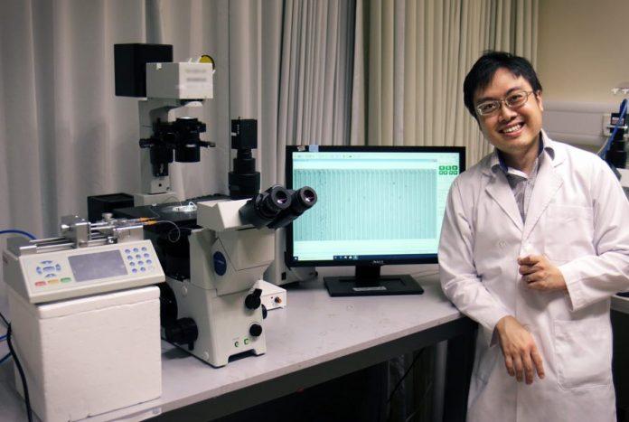 Scientists develop 15-minute immune-profiling assay