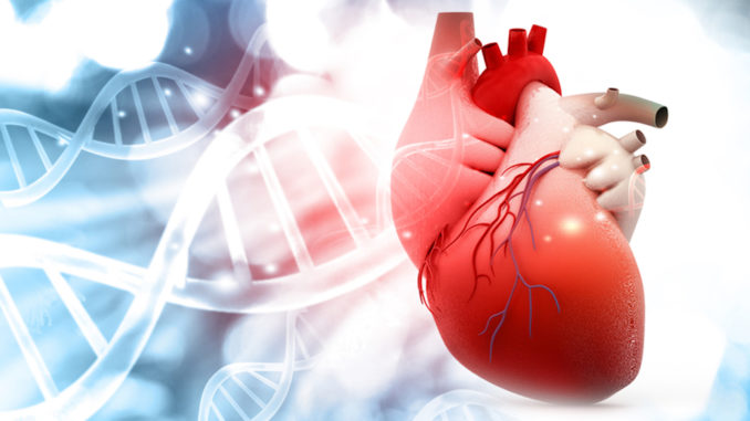 Research finds heart transplantation using donation after cardiac death with NRP