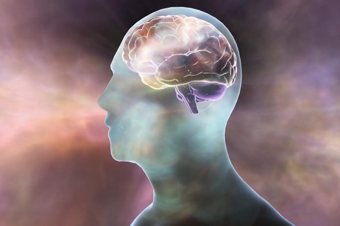 Study: Memory details fade over time, with only the main gist preserved