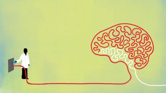Scientists identify a molecule critical to functional brain rejuvenation