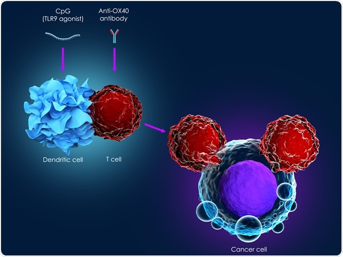 Study: New cancer findings can give wider access to immunotherapy