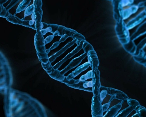 Research reports the impact of genetics on epigenetic factors