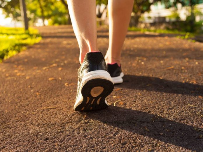 Study: Walking patterns of movement disorders shared among worms, mice, and humans