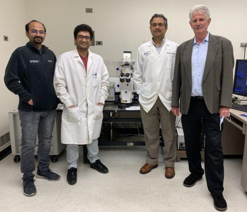 Study: Possible Link Found Between Herpes Simplex Virus and Neurodegenerative Diseases